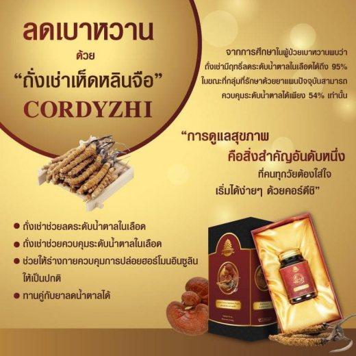 Cordy Zhi รีวิว อาหารเสริมลดเบาหวาน